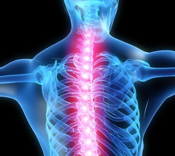 BACK PAINS?
